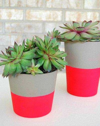 蛍光ピンクで塗った植木鉢.jpeg