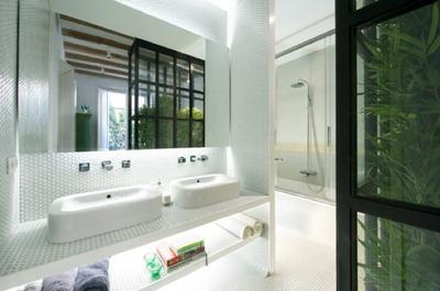 白基調のバスルームと植物のパーティション.jpg