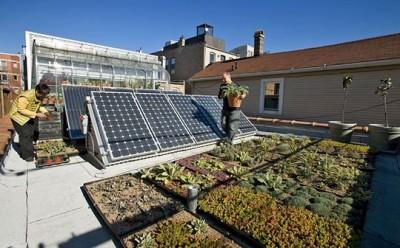緑化されソーラーパネル、蓄熱パネル、雨水再利用水槽が設置された屋上