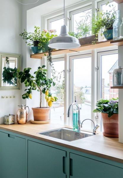 観葉植物がたくさん置かれた大きな窓のあるキッチンシンク