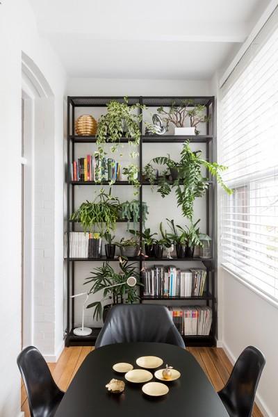 リビングの脇に作り込まれた大きな窓に面した細長いダイニングの左端の棚 観葉植物
