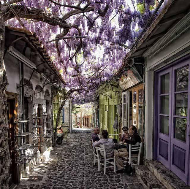 暖かみのあるギリシアのローカルな小道の風景