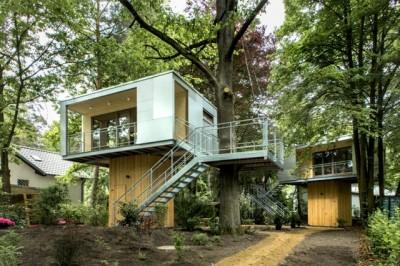 森のなかに建つ、現代のツリーハウス