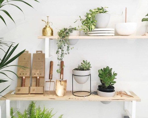 IVY MUSEの植物用壁面造作棚1 多肉植物 スコップ