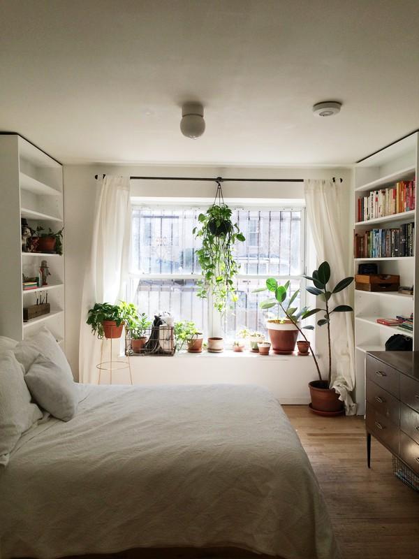大きな腰高窓の出窓にたくさんの観葉植物の置かれた、6畳程度のベッドルーム