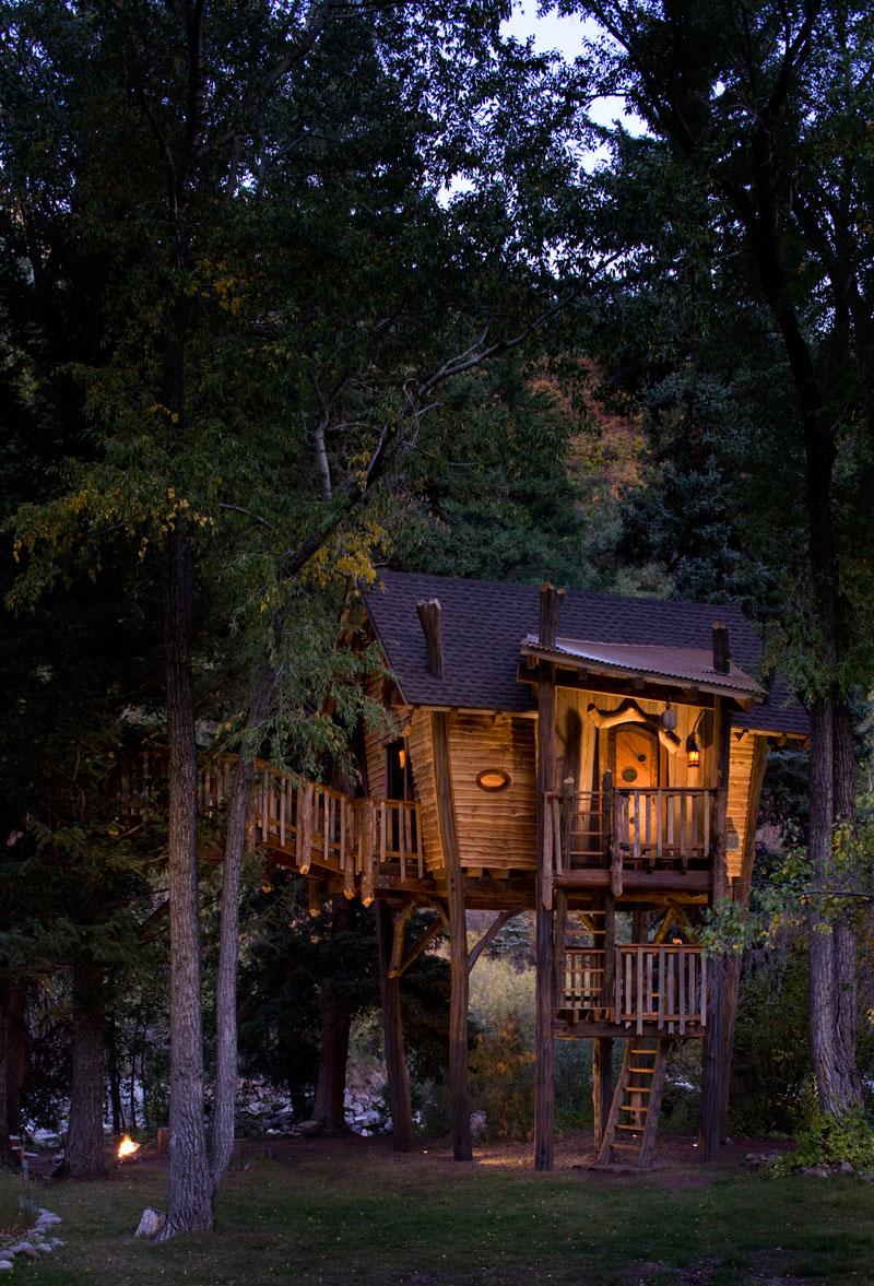 森に建つツリーハウスの夕暮れ