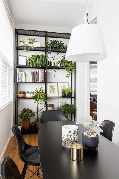 リビングの脇に作り込まれた大きな窓に面した細長いダイニングの右端の棚 観葉植物