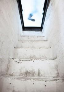 地下のワインセラーへと降りる階段