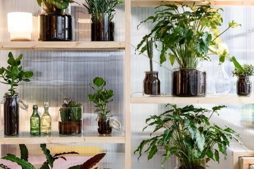 角材とポリカ波板で作った、光を通すシンプルなスペースディバイダー兼ディスプレイ棚に観葉植物を飾る